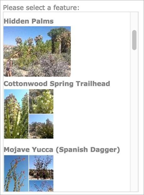 Create a ListView widget—Web AppBuilder for ArcGIS